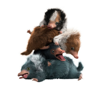 baby_niffler_pose01_v0011_met_DATA2